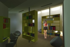 3library